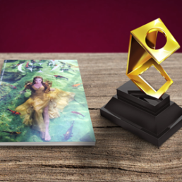Gráfica online é vencedora do Prêmio Fernando Pini